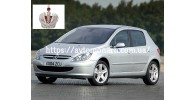 Автостекла на Peugeot 307 2001-2008